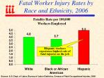 fatal worker injury rates by race and ethnicity 2006