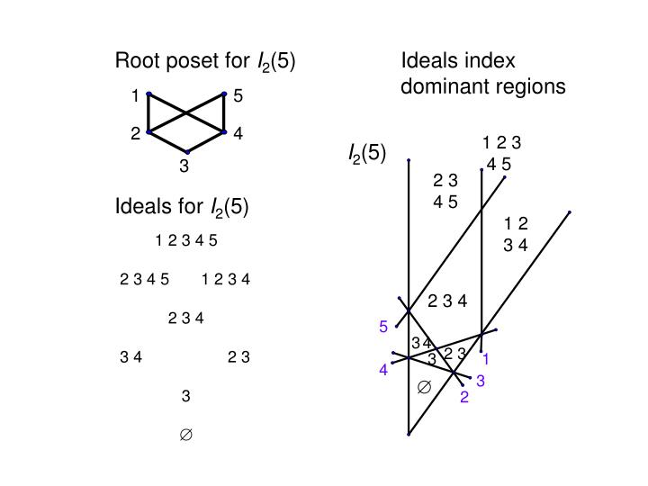 Root poset for