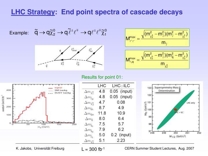 LHC Strategy