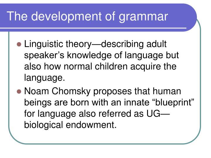 The development of grammar