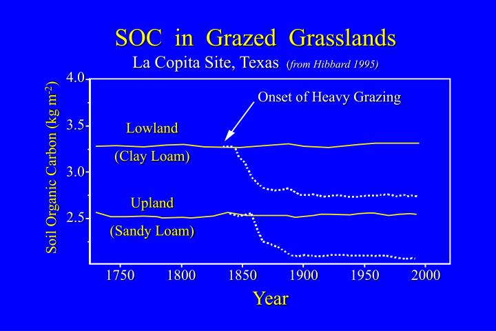 SOC  in  Grazed  Grasslands