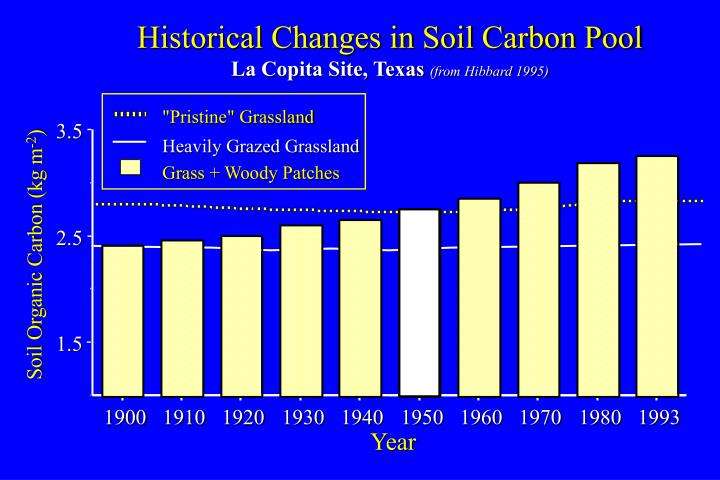 Historical Changes in Soil Carbon Pool