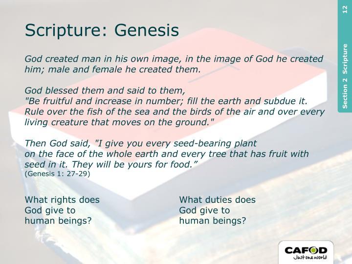 Scripture: Genesis
