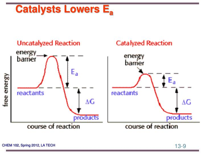 Catalysts Lowers E