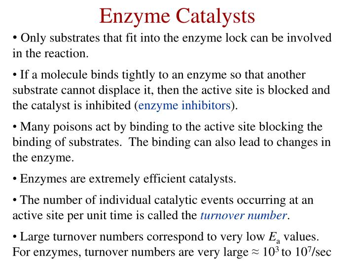 Enzyme Catalysts