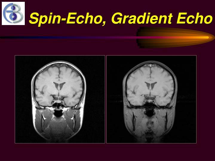 Spin-Echo, Gradient Echo