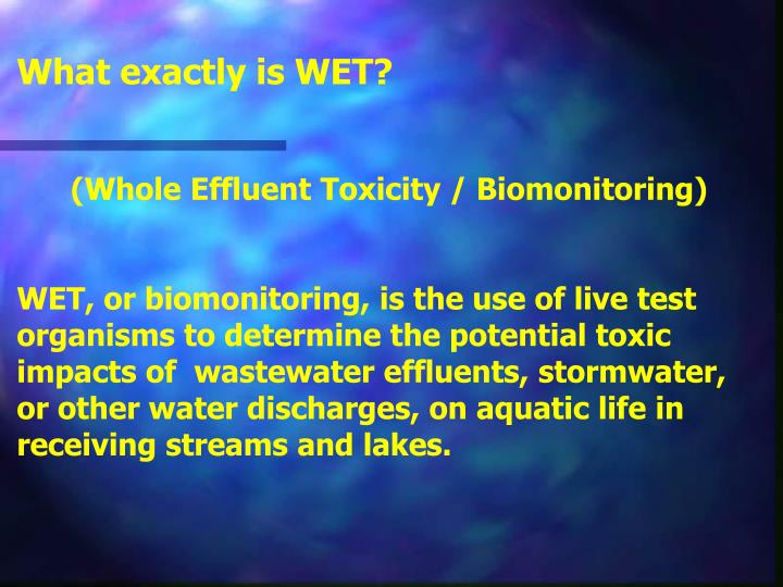 What exactly is WET?