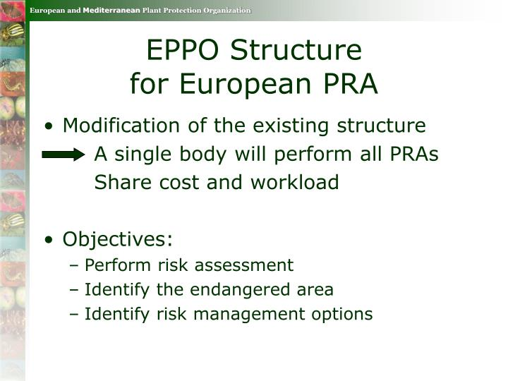 EPPO Structure