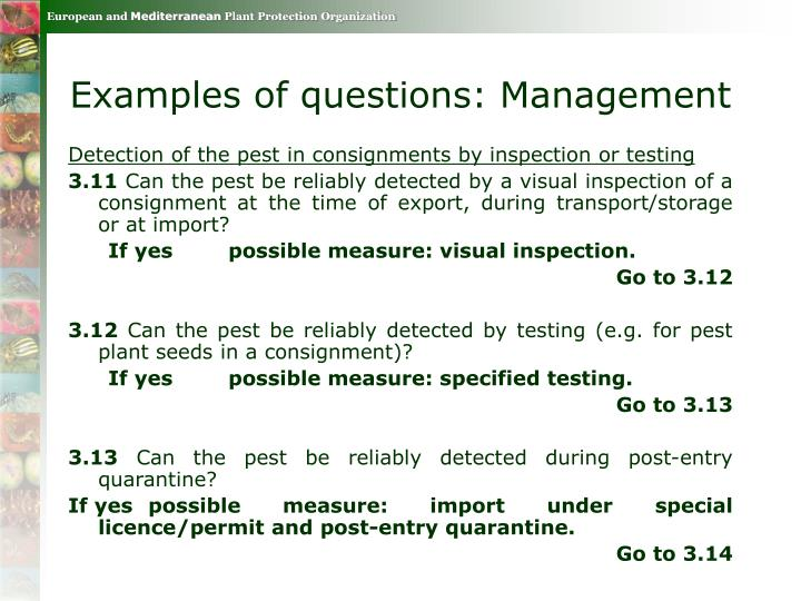 Examples of questions: Management