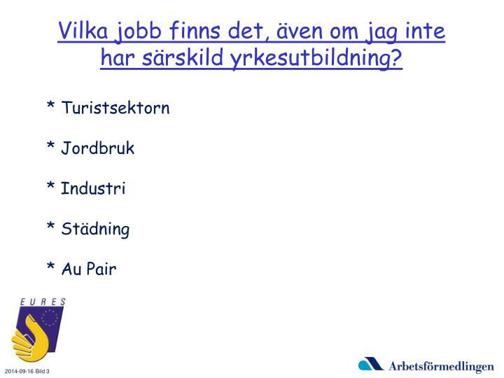 Vilka jobb finns det, även om jag inte har särskild yrkesutbildning?
