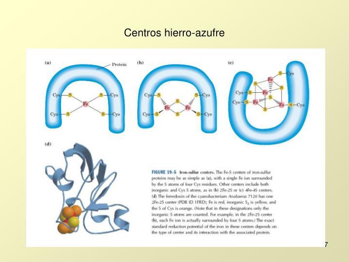Centros hierro-azufre