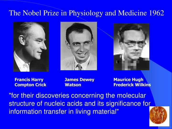 The Nobel Prize in Physiology and Medicine 1962