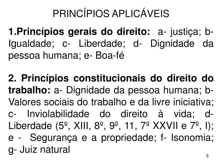 PRINCPIOS APLICVEIS