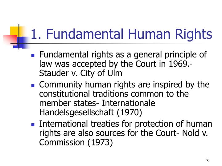 1. Fundamental Human Rights