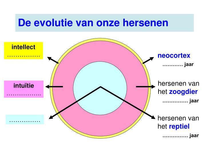 De evolutie van onze hersenen