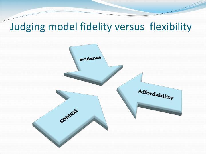 Judging model fidelity versus  flexibility