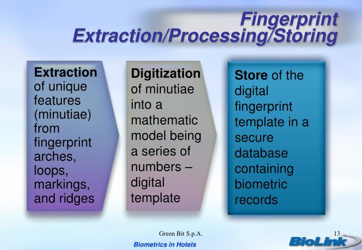 Fingerprint Extraction/Processing/Storing