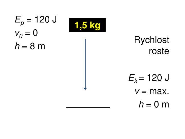 1,5 kg