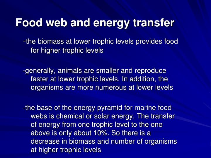 Food web and energy transfer