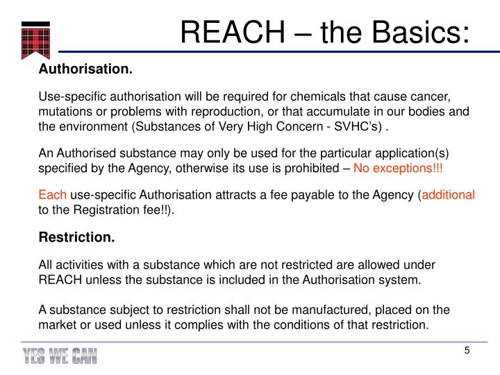 REACH – the Basics: