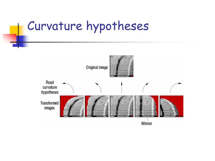 Curvature hypotheses