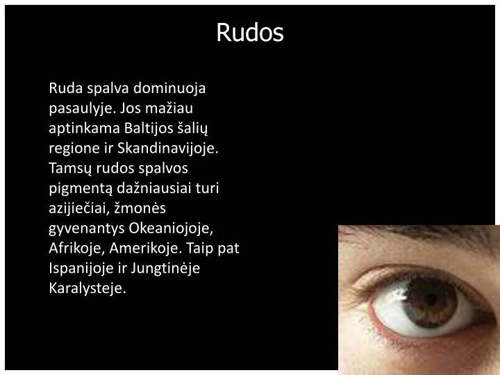 Rudos