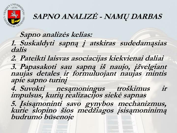 SAPNO ANALIZĖ - NAMŲ DARBAS
