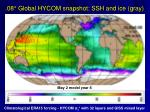 08 global hycom snapshot ssh and ice gray
