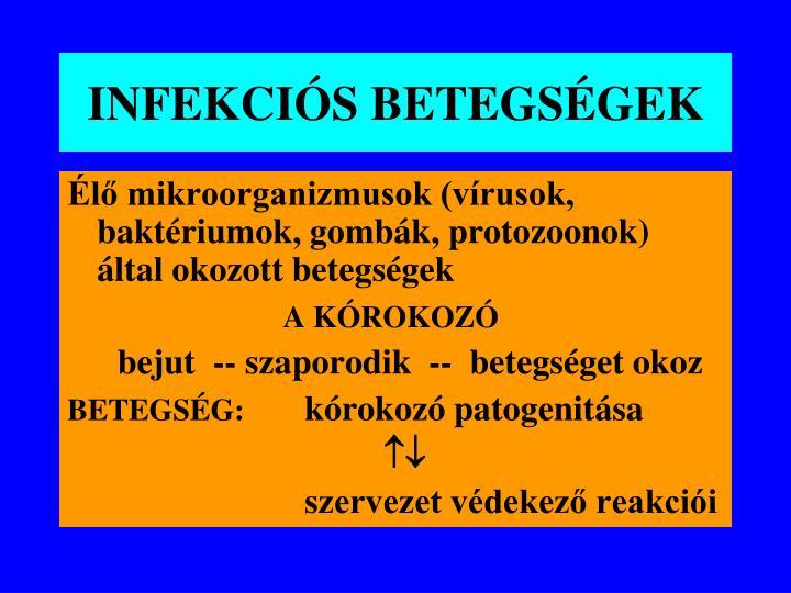INFEKCIÓS BETEGSÉGEK