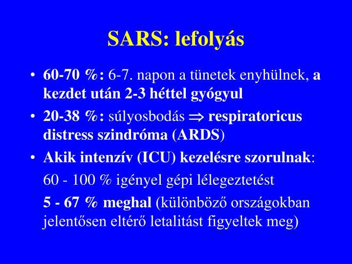 SARS: lefolyás