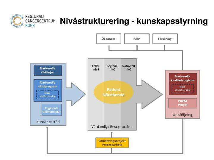 Nivåstrukturering - kunskapsstyrning