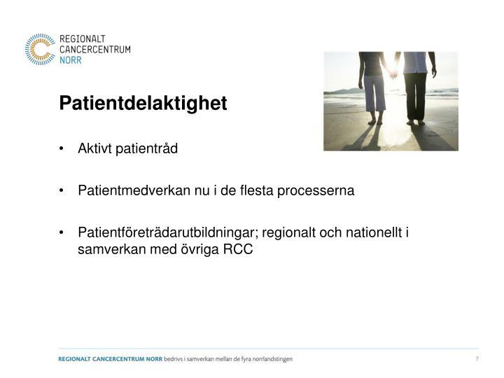 Patientdelaktighet