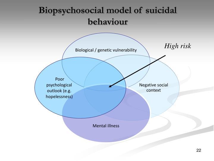 Biopsychosocial model of suicidal behaviour