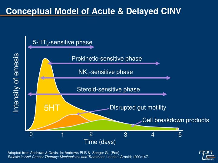 Conceptual Model of Acute & Delayed CINV