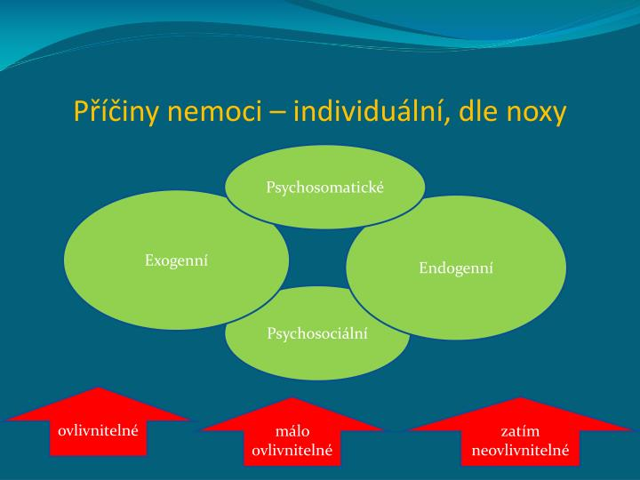 Příčiny nemoci – individuální, dle noxy