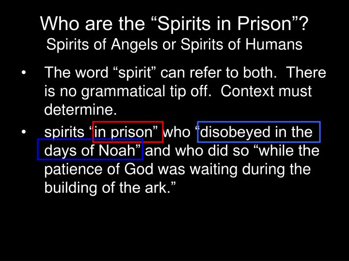 "Who are the ""Spirits in Prison""?"