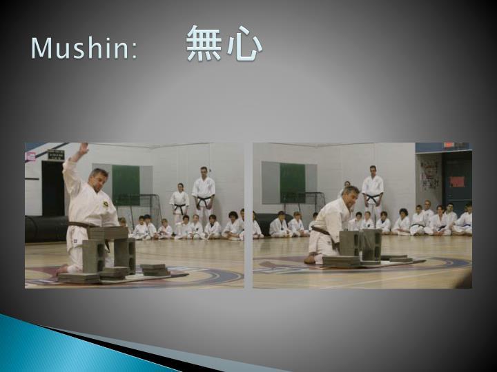 Mushin: