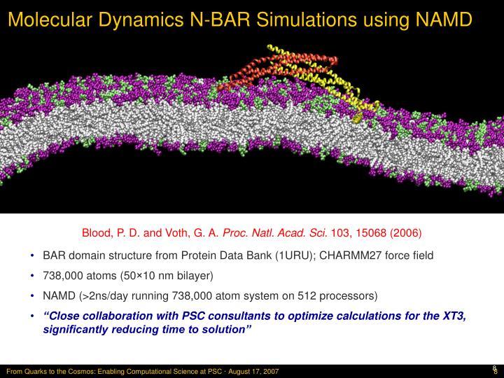 Molecular Dynamics N-BAR Simulations using NAMD