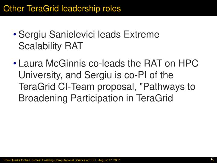 Other TeraGrid leadership roles