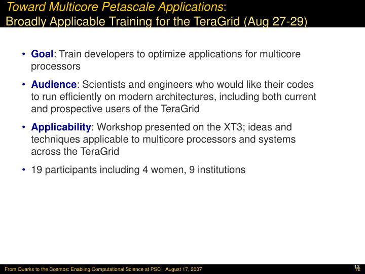 Toward Multicore Petascale Applications