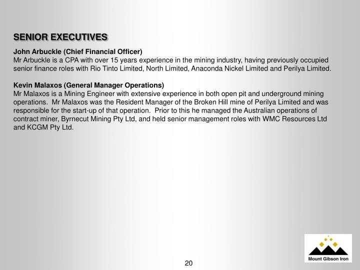 SENIOR EXECUTIVES