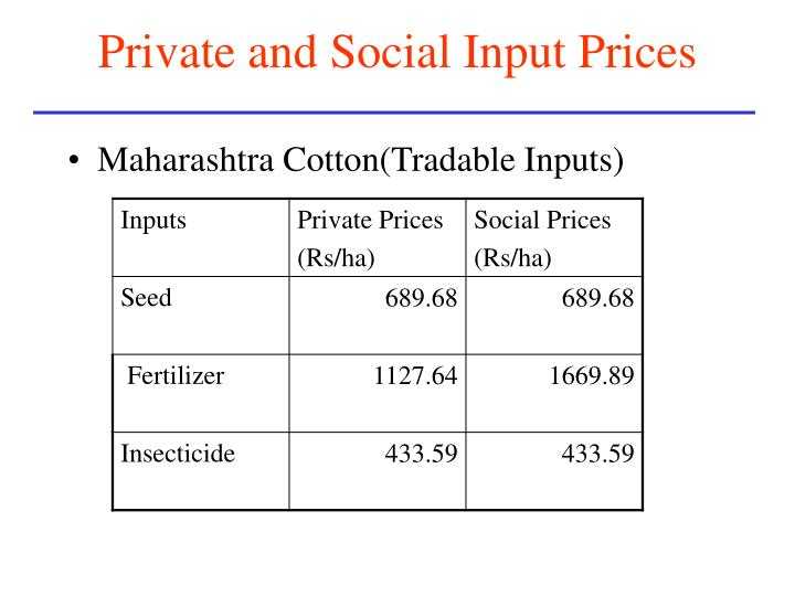 Private and Social Input Prices