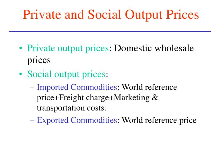 Private and Social Output Prices