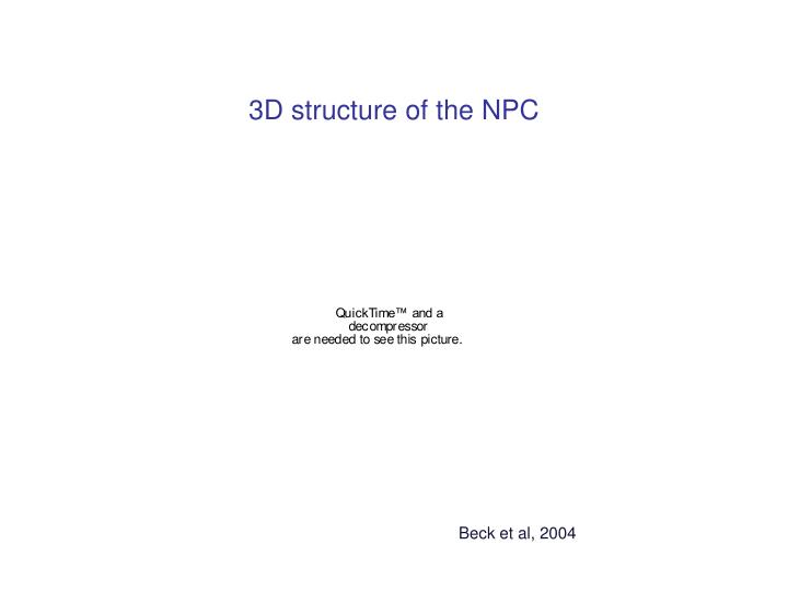 3D structure of the NPC