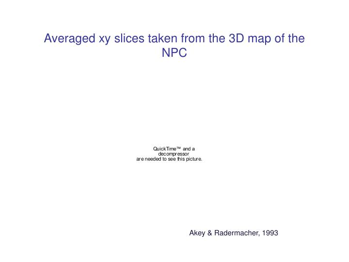Averaged xy slices taken from the 3D map of the NPC