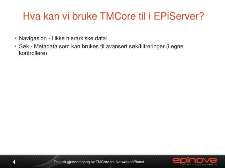 Hva kan vi bruke TMCore til i EPiServer?