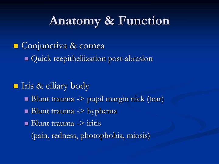 Anatomy & Function
