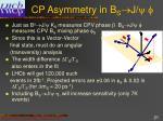 cp asymmetry in b s j f