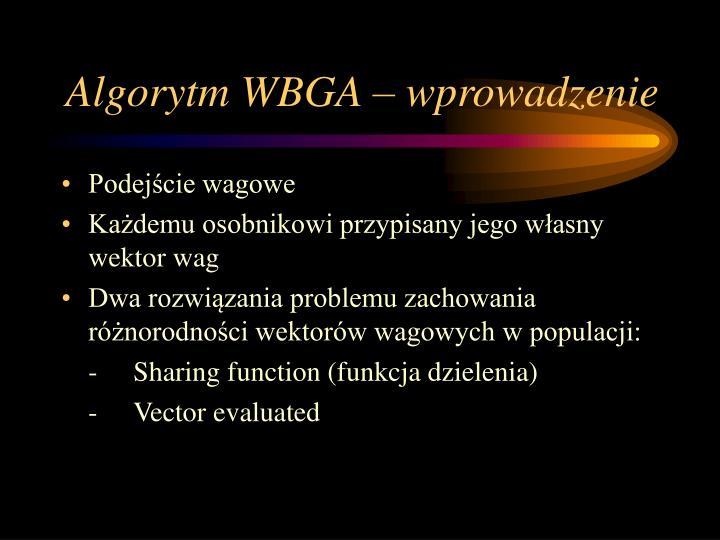 Algorytm WBGA – wprowadzenie