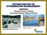stormwater management opportunities1